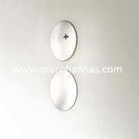 structure of piezoelectric ultrasonic transducer piezo hannas. Black Bedroom Furniture Sets. Home Design Ideas